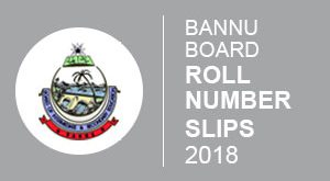 Bannu Board Roll number Slip 2018
