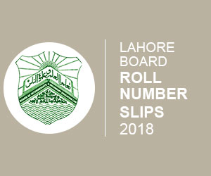 Lahore Board Roll Number Slip 2020