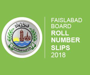 Faislabad Board Roll Number Slip 2018
