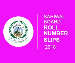 Sahiwal Board 9th & 10th Class Roll Number Slip 2018
