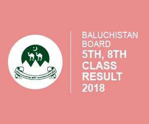 Baluchistan Districts 5th & 8th class Results 2018